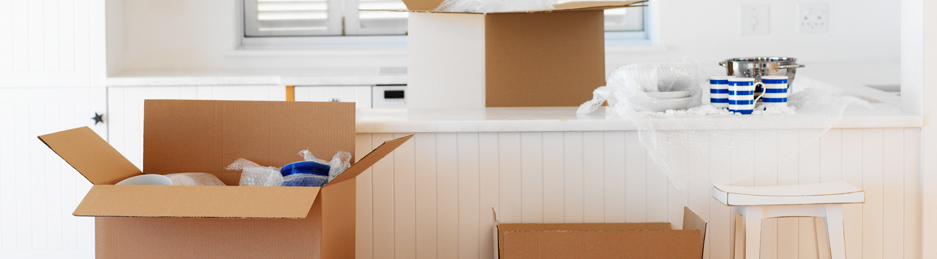 Choosing Professional Moving Company