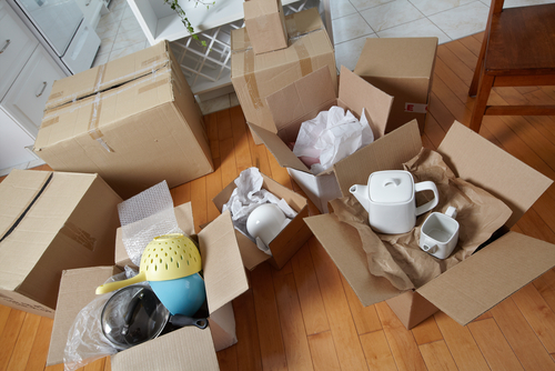 Professional House Movers